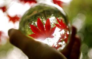 crystal-7_1523994i